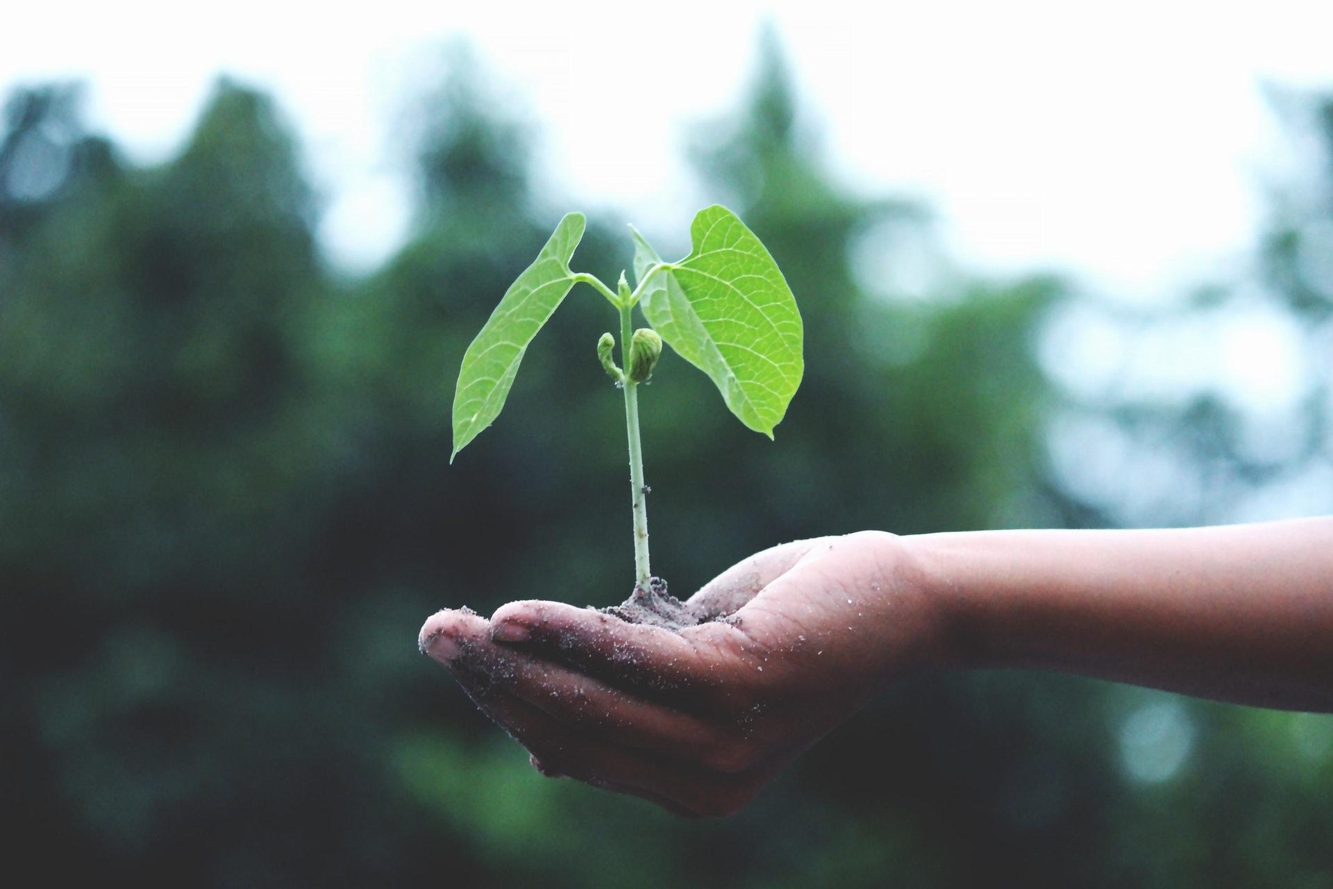 'Duurzaamheid wordt voorwaarde voor merken om te overleven'